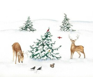 background, tree, and christmas image
