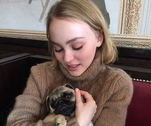 dog, lily rose depp, and pug image