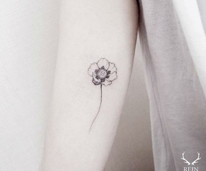 tattoo, flower, and poppy image