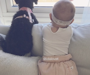 baby, best friends, and dog image