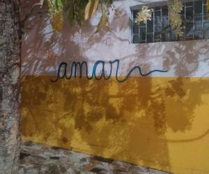 amores, brasil, and grafite image