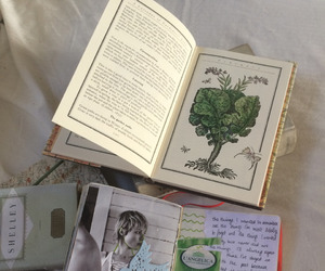 beauty, diary, and plants image