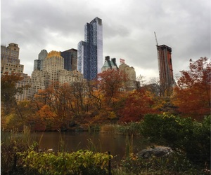 beautiful, fall, and Central Park image