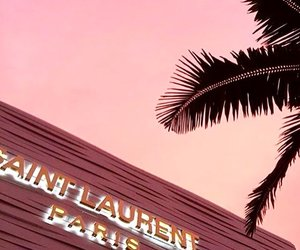 pink, paris, and palms image