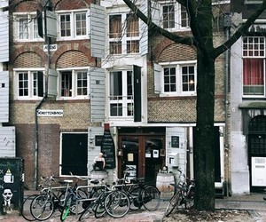amsterdam, city, and cold image