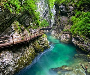 nature, slovenia, and river image