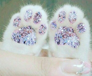 cat, diamond, and paws image