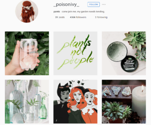 aesthetic, bottle, and poison ivy image