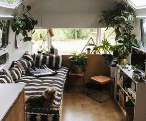 home, plants, and travel image