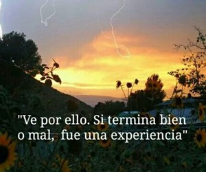 frases and experiencia image