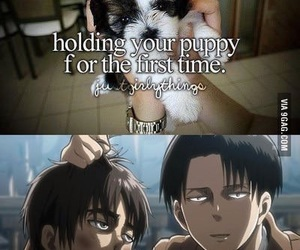 anime, funny, and meme image