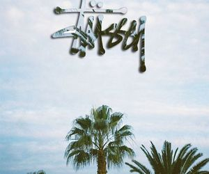 nature and stussy image