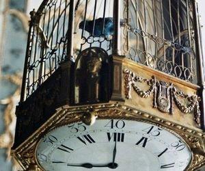 clock, bird, and vintage image