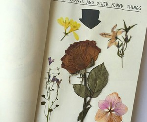 beautiful, journal, and plants image