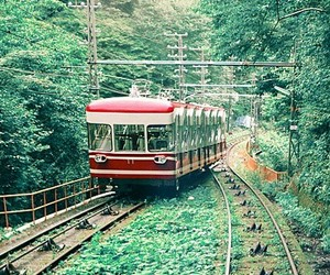green, train, and nature image