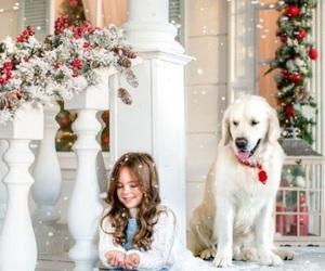 christmas, holiday, and snowing image