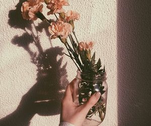 flowers, photography, and aesthetic image