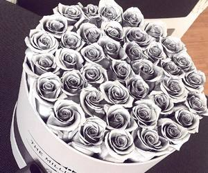 flowers, roses, and grey image