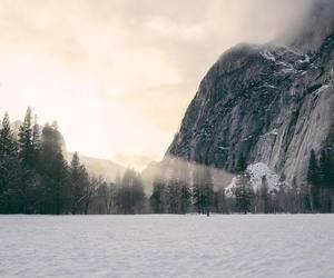 explore, snow, and tree image