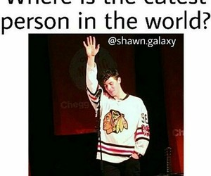 cute, illuminate, and shawn mendes image