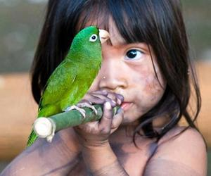 bird, girl, and papagaio image