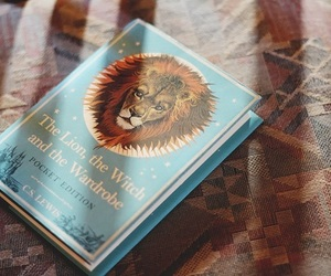book, lion, and narnia image