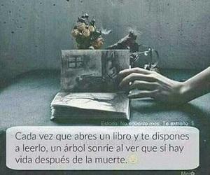book and vida image