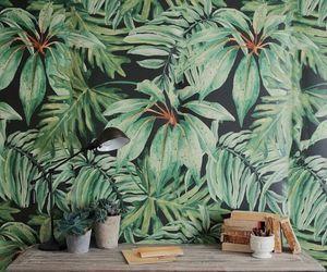 banana leaf, deco, and plants image