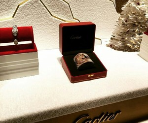 amazing, jewellery, and cartier image