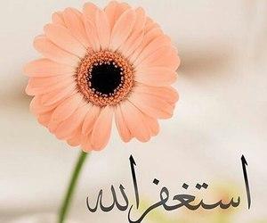 allah, muslim, and muslima image
