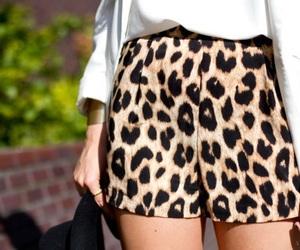 fashion, shorts, and leopard image