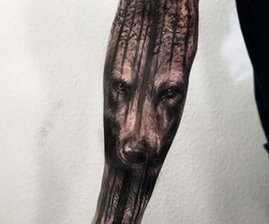 wolf, tattoo, and forest image