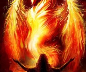fantasy and phoenix image