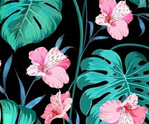 wallpaper, lockscreen, and flower lockscreen image