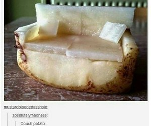 couch, funny, and potato image