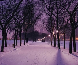 cities, nature, and snow image