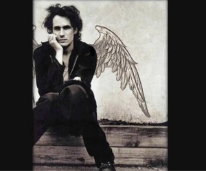 angel, hallelujah, and jeff buckley image