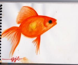 art, beautiful, and fish image