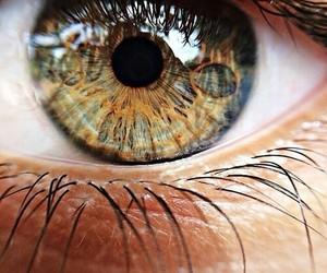 beauty and eye's image