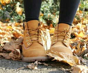 autumn, fall, and shoes image