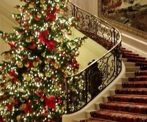 christmas, xmas, and stairs image