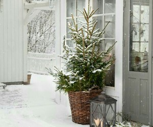 christmas, house, and christmas tree image