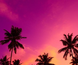 wallpaper, pink, and palm trees image