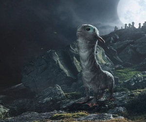 animals, books, and jk rowling image