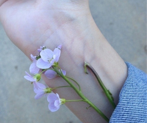 flowers, grunge, and pale image
