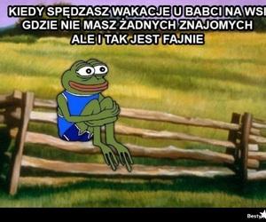 frog, śmieszne, and true image