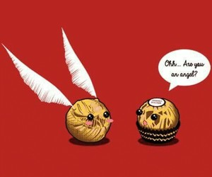 ferrero and harry potter image