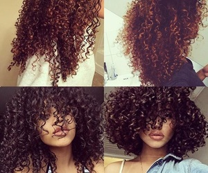 brown, brunette, and curls image