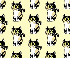 cat and pattern image