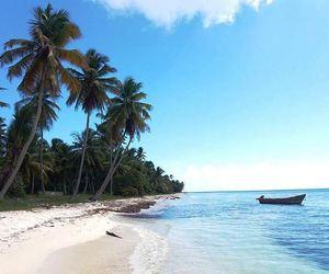 beach, Caribbean, and summer image